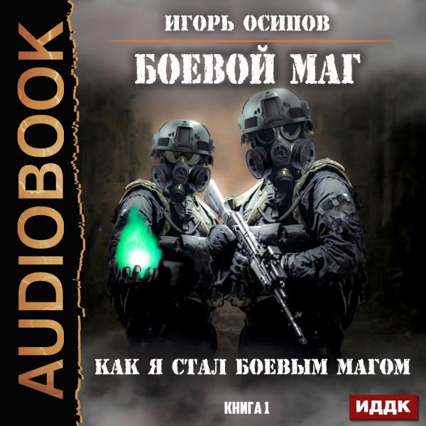 Аудиокнига Боевой маг. Книга 1. Как я стал боевым магом