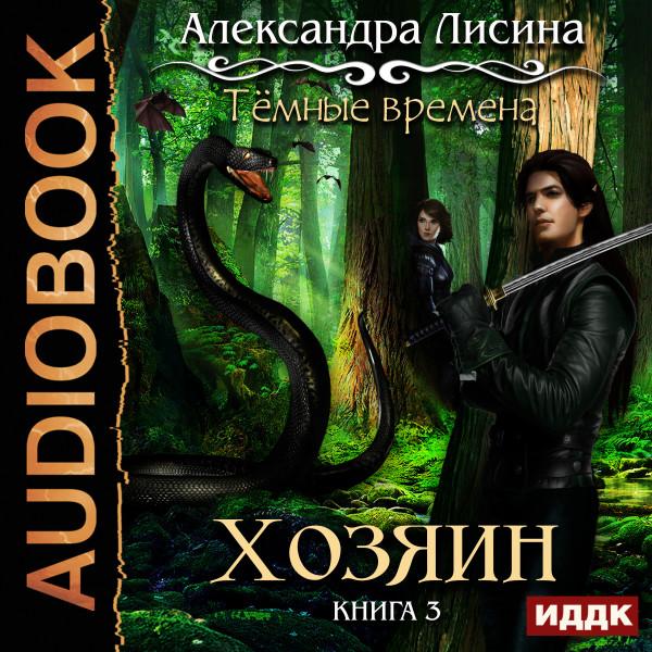 Аудиокнига Темные времена. Книга 3. Хозяин