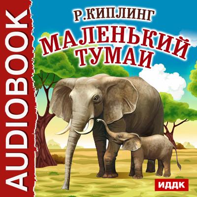 Аудиокнига Маленький Тумаи
