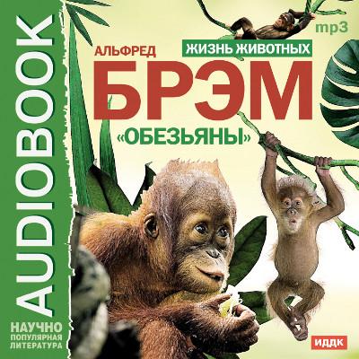 Аудиокнига Жизнь животных. Обезьяны